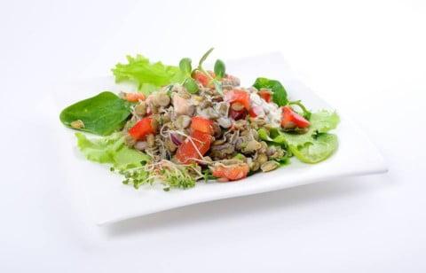 salata de linte germinata